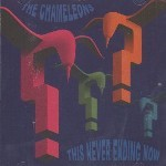 The Chameleons &#8211; This Never Ending Now