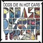 Dogs Die In Hot Cars &#8211; Please Describe Yo...