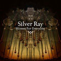 Silver Ray &#8211; Homes For Everyone